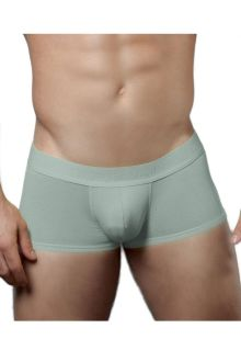 Doreanse 1760-GRY Low-rise Trunk
